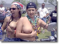 Dawgs on Hawgs Biker Chick Pictures